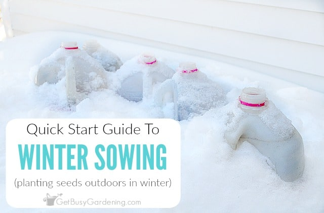 Quick-Start Guide To Winter Sowing Seeds