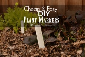 Cheap And Easy DIY Plant Markers