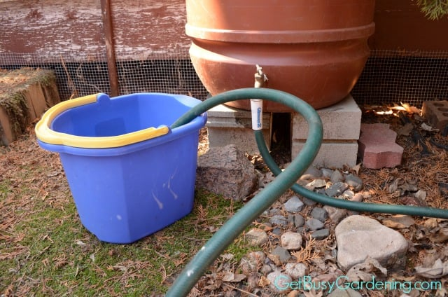 Fill Wash Bucket With Rain Water