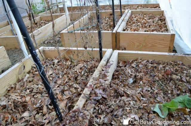 Add Leaves To Garden Beds