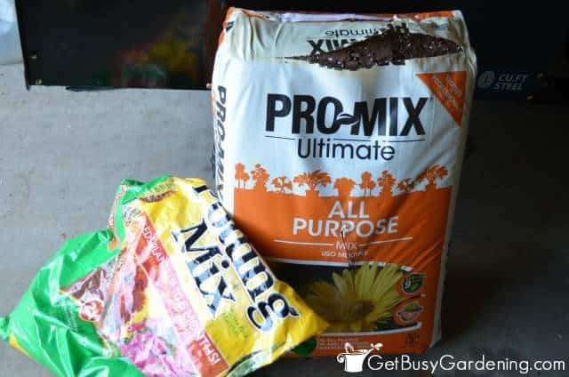 Open bags of potting mix can cause bugs in indoor plant soil
