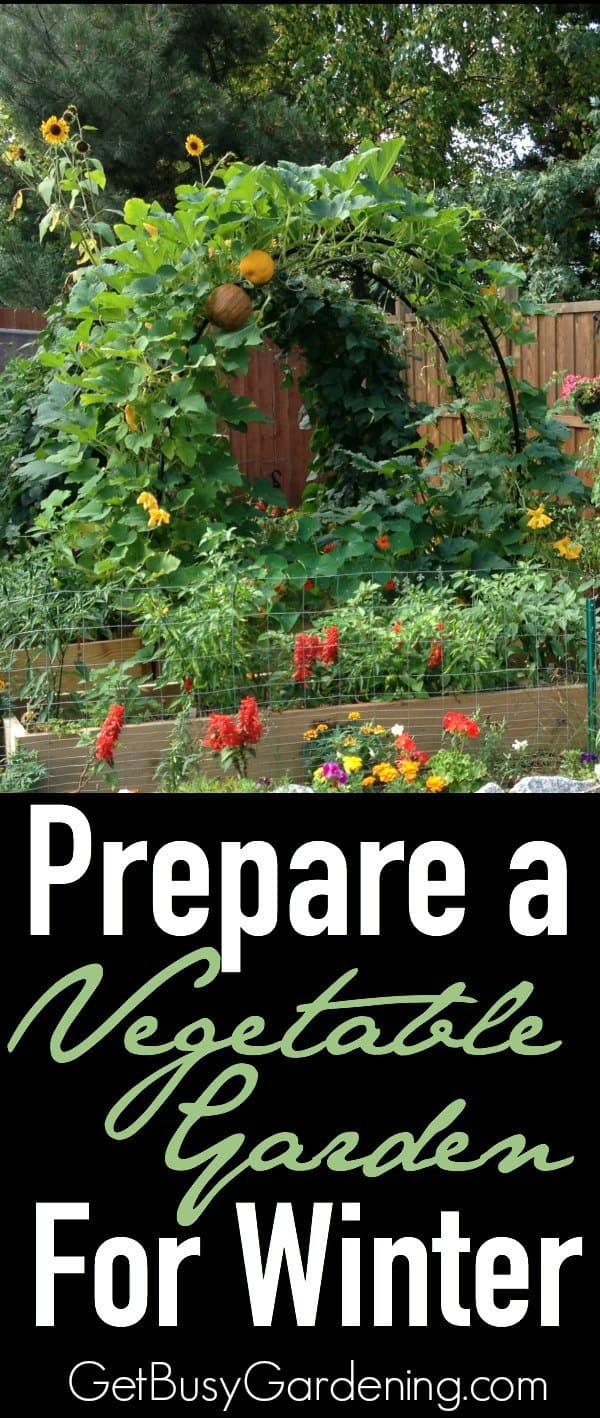 Prepare a vegetable garden for winter - How to prepare garden for winter ...