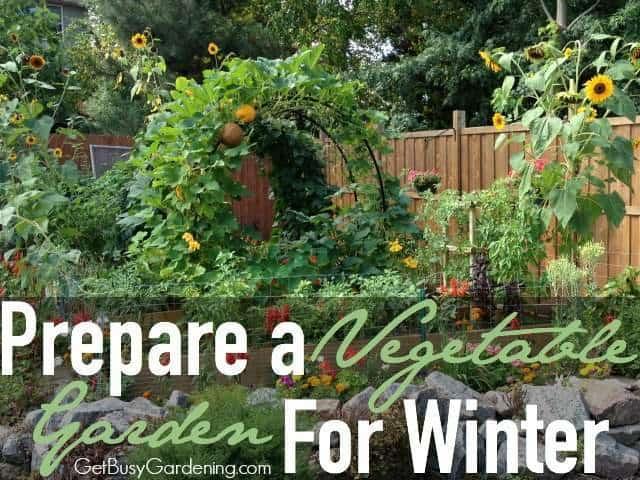 Vegetable garden ideas - Prepare A Vegetable Garden For Winter