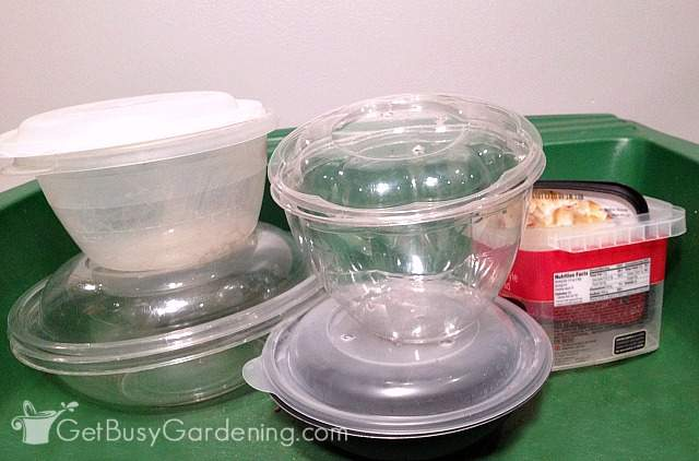 Disposable or old food storage containers for winter sowing