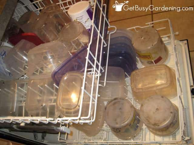 Cleaning winter sowing containers in the dishwasher