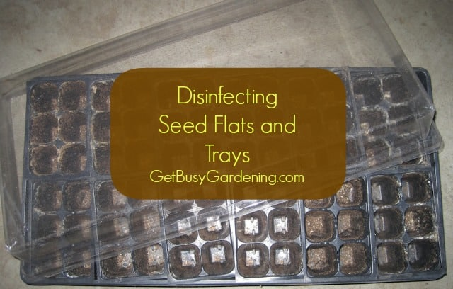 Disinfecting Seed Flats and Trays