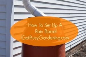 How To Set Up A Rain Barrel