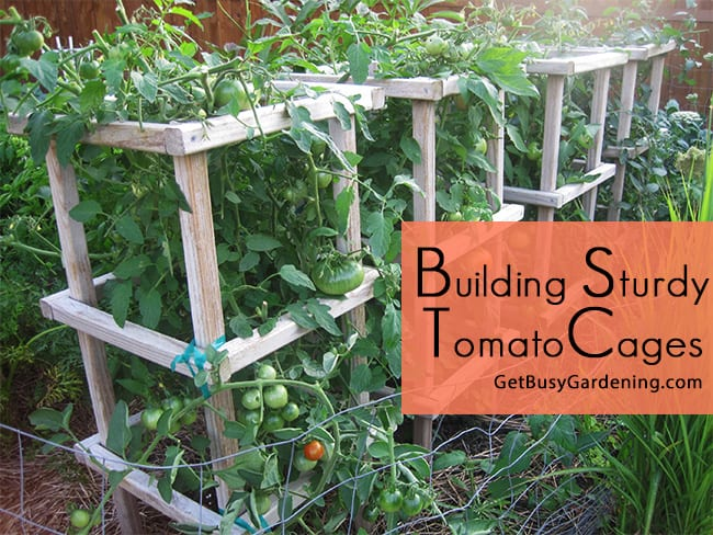 Homemade tomato cages wood building sturdy tomato cages