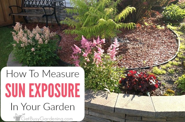 Merveilleux How To Determine Sun Exposure In Your Garden