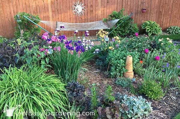 Partial sun garden area