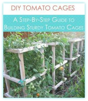 Sturdy Tomato Cages Plans