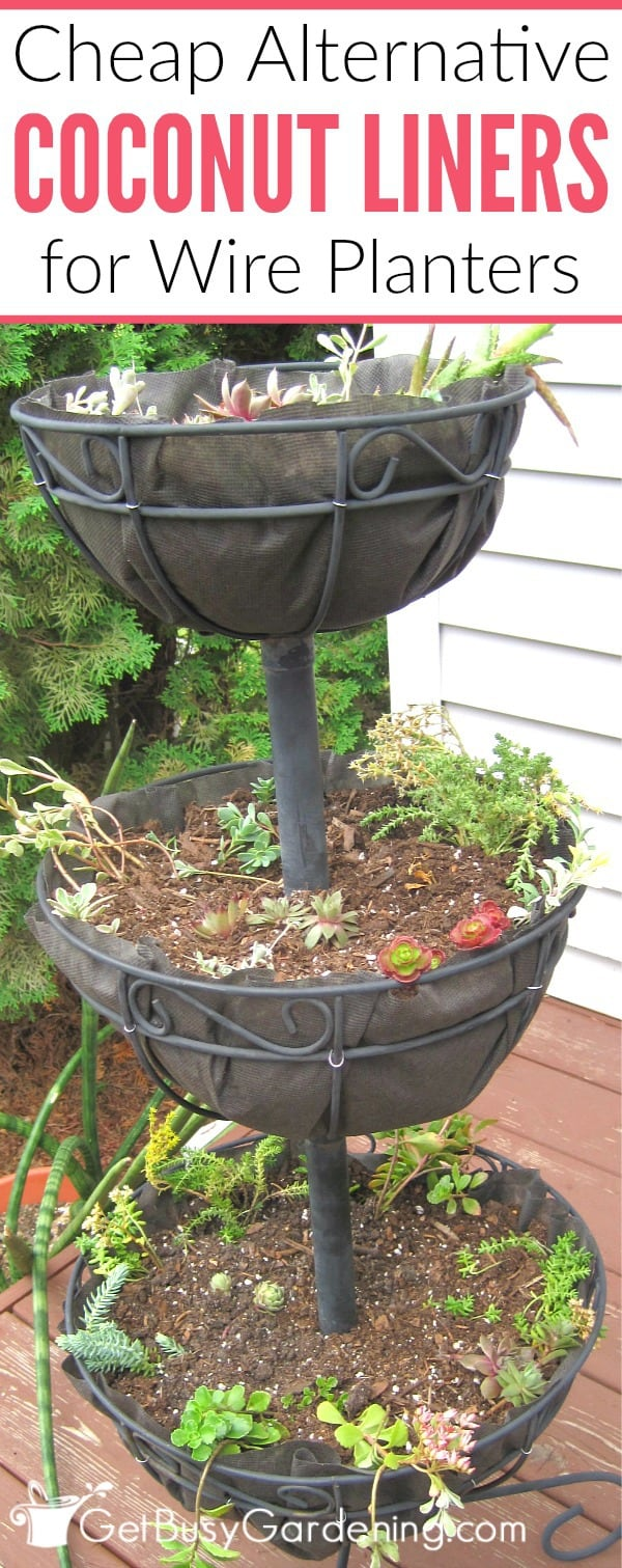 A Cheap Alternative To Coconut Liners For Hanging Baskets