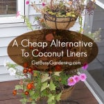 A cheap Alternative To Coconut Liners