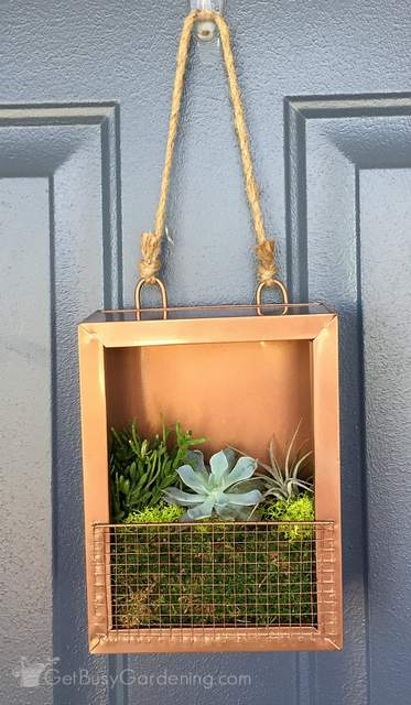 Vertical succulent art hanging on front door
