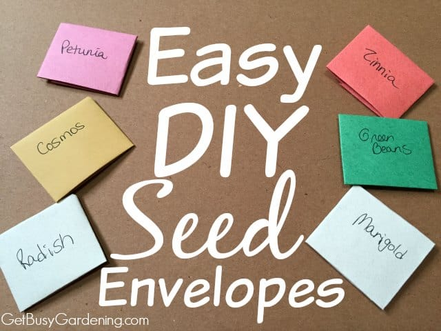 DIY Seed Envelopes