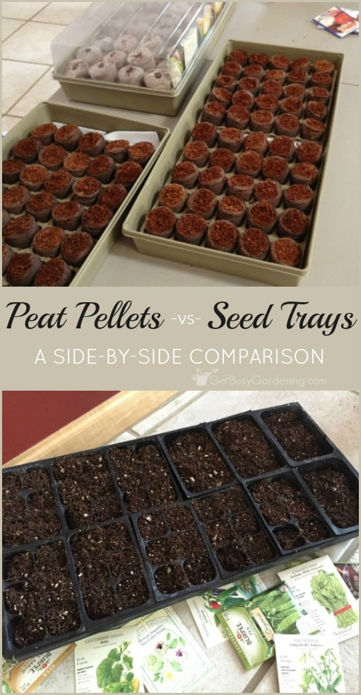 A side-by-side comparison of using seed starting peat pellets -vs- soil filled seedling trays. Includes a list of pros and cons for both methods.