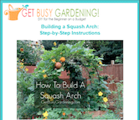 Step-by-Step instructions for How To Build a Squash Arch! | GetBusyGardening.com