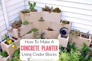 How To Make A Concrete Block Planter