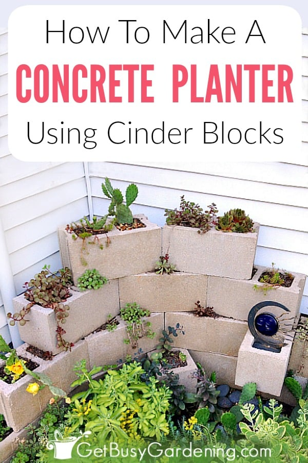 A DIY concrete block planter not only looks fantastic, but it's also very inexpensive to build using simple concrete landscape blocks that can be found at any home improvement store. Follow these detailed cinder block planter instructions to build your own!