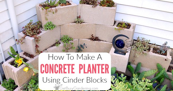 how to make a concrete block planter get busy gardening. Black Bedroom Furniture Sets. Home Design Ideas