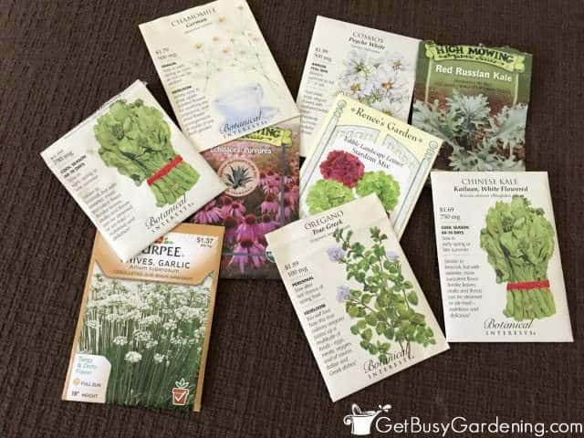 Seed Options For Winter Sowing