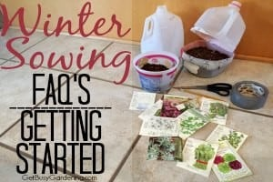 Winter Sowing FAQs – Getting Started
