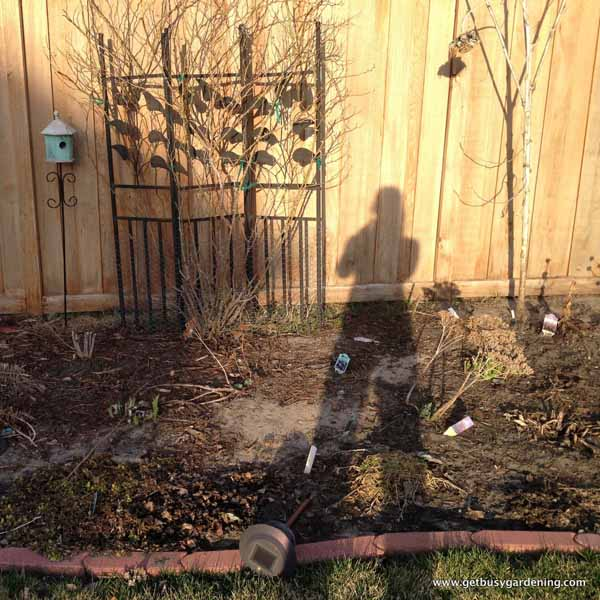My shadow in the garden - taking it all in