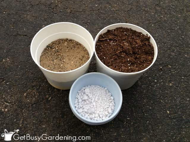 Ingredients For DIY Succulent Potting Soil