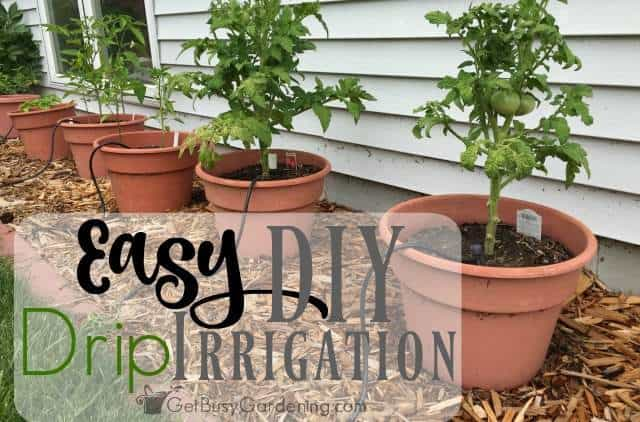 Easy Diy Garden Drip Irrigation System
