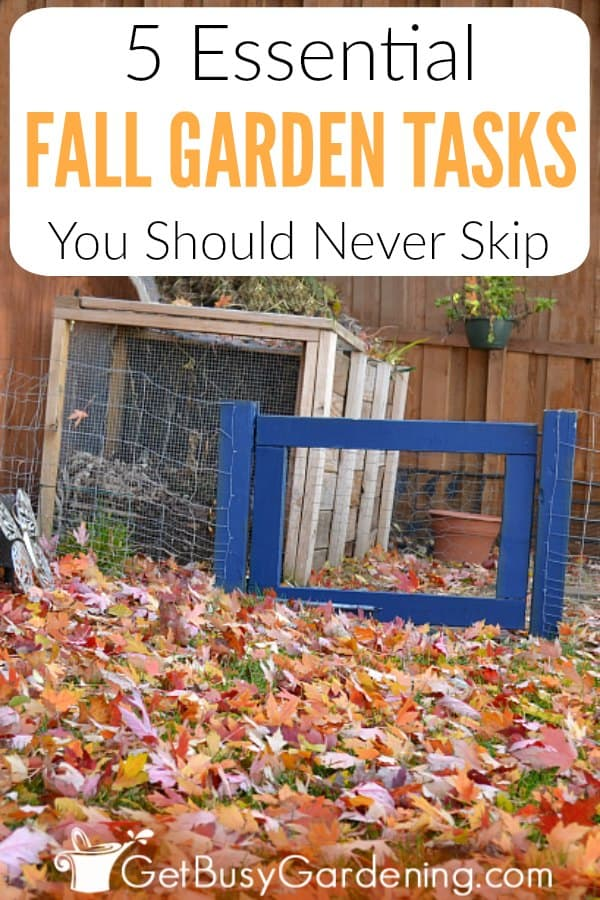If fall chores and preparation are stressing you out, then this short list of essential fall garden tasks is just what you need! You don't have to stress out over getting it all done before winter. Most fall maintenance and clean up tasks can wait until spring. Follow my quick DIY fall care tips, and get my short checklist of the 5 tasks you should never skip (and maybe add a few of your own ideas). Then relax and leave the rest until spring.