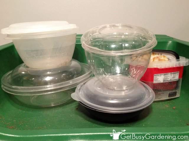 Some Options For Winter Sowing Containers