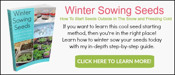 Winter sowing seeds eBook