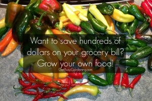 saveHundredsOnGroceries