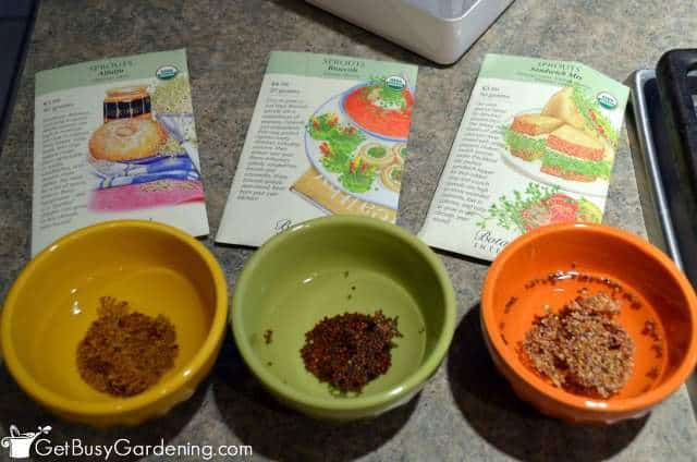 Soak Seeds For Sprouting Overnight