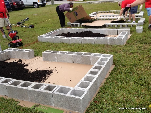 Cardboard under raised beds to smother the grass