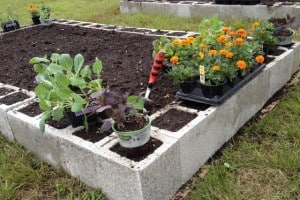 Building a community garden with the Troy-Bilt Saturday6