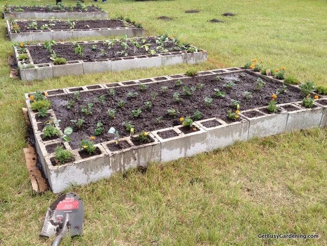 Community garden beds done