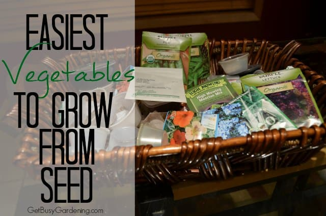 Easiest Vegetables To Grow From Seed