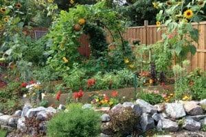 2014 Vegetable Garden Planning