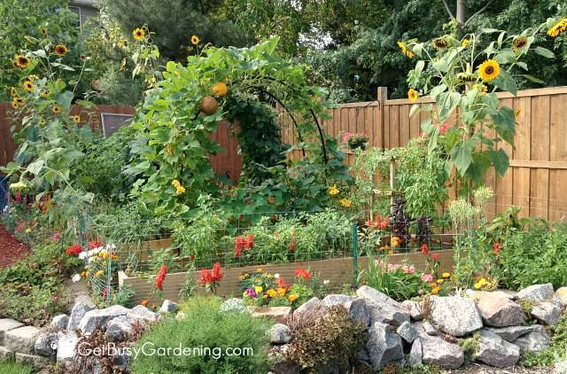 Marvelous My Vegetable Garden From 2013