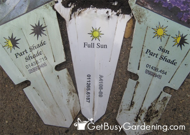 Plant labels show ideal sun exposure