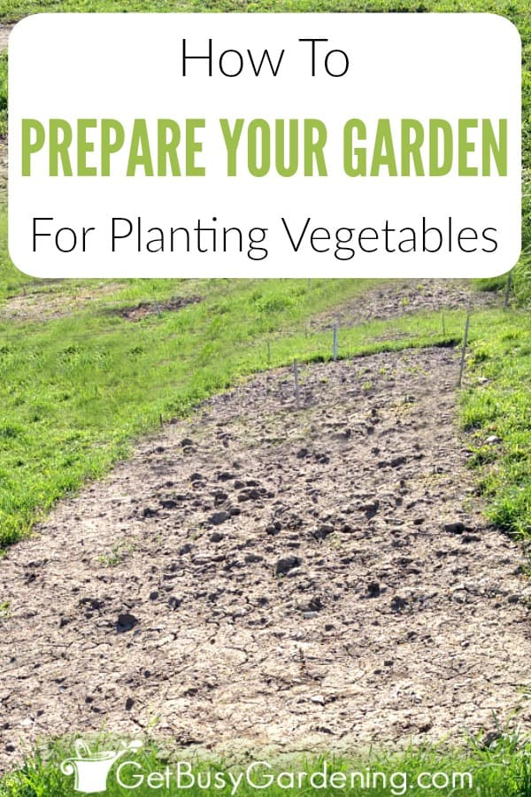 Weeding, amending and cultivating the soil are important steps for preparing garden beds for planting vegetables. Find information on vegetable garden soil preparation, including details about the best soil for garden beds, tips on organic garden soil amendments, and how to prepare soil for planting vegetables.