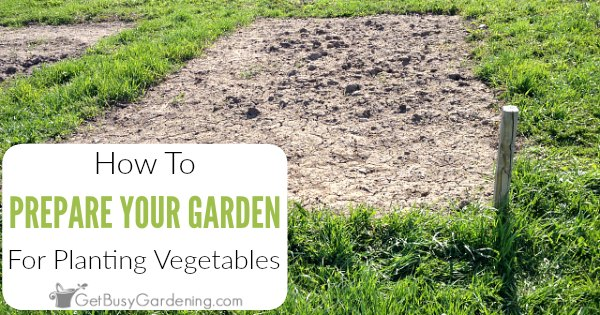 How To Prepare A Garden Bed For Planting Vegetables - Get Busy Gardening