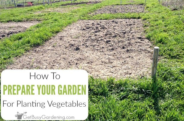 How To Prepare A Garden Bed For Planting Vegetables Get Busy