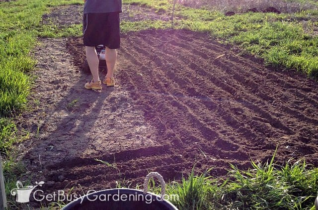 Tilling is optional for vegetable garden soil preparation