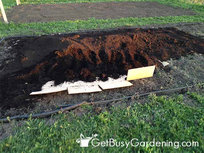 Layering Compost Over Cardboard
