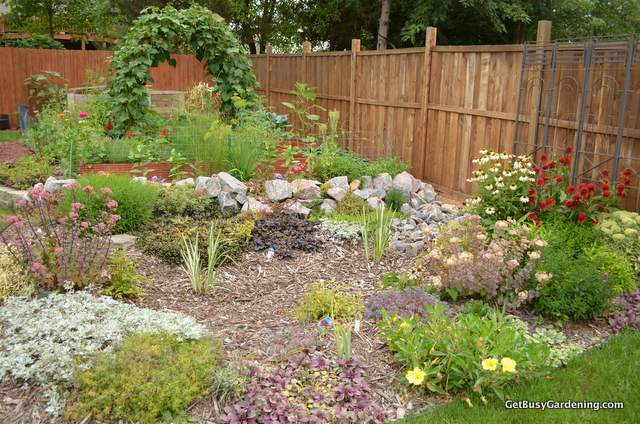 Vegetable and Rain Gardens