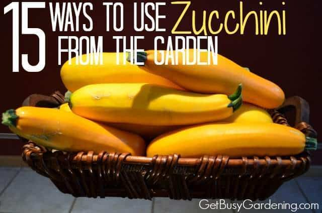 15 Ways To Use Zucchini From The Garden