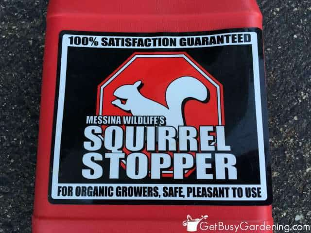 Messina Wildlife Squirrel Stopper Product Review