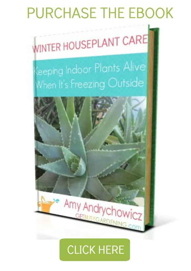 WinterEbookSidebarWidget